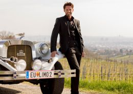 Limousinenfahrt in die Weinberge südlich von Wien